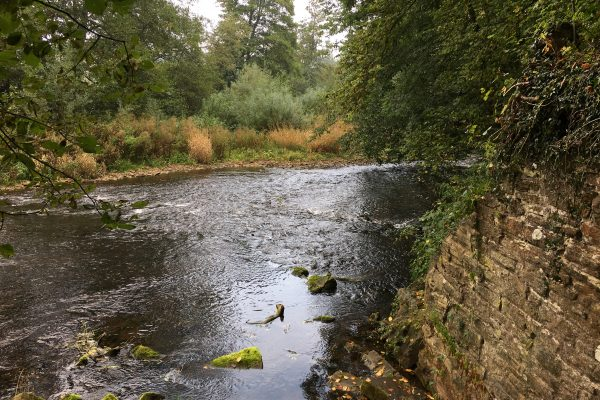 Rivers Teme and Monnow (11)
