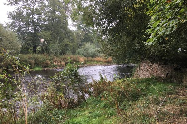 Rivers Teme and Monnow (4)