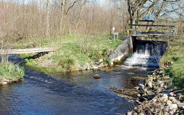 Six Weir Removals on the River Villestrup, Jutland, Denmark