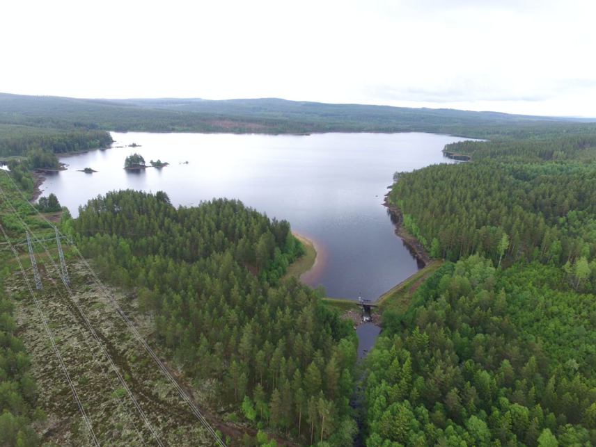 Trout return to Lake Acksjön  after an absence of 100 years