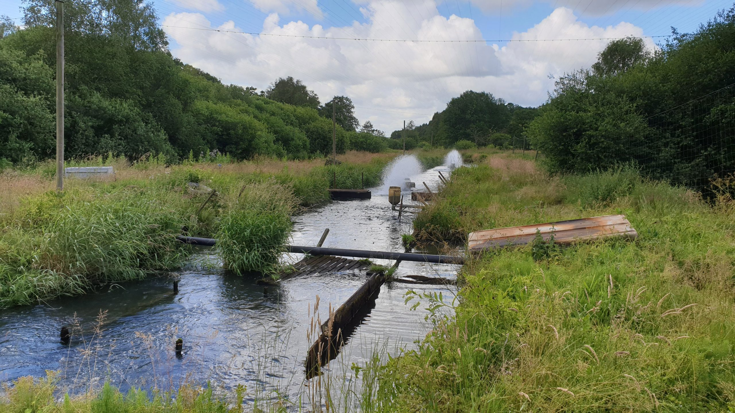 Barrier removal and river restoration of spawning and nursery habitats in the River Vejle