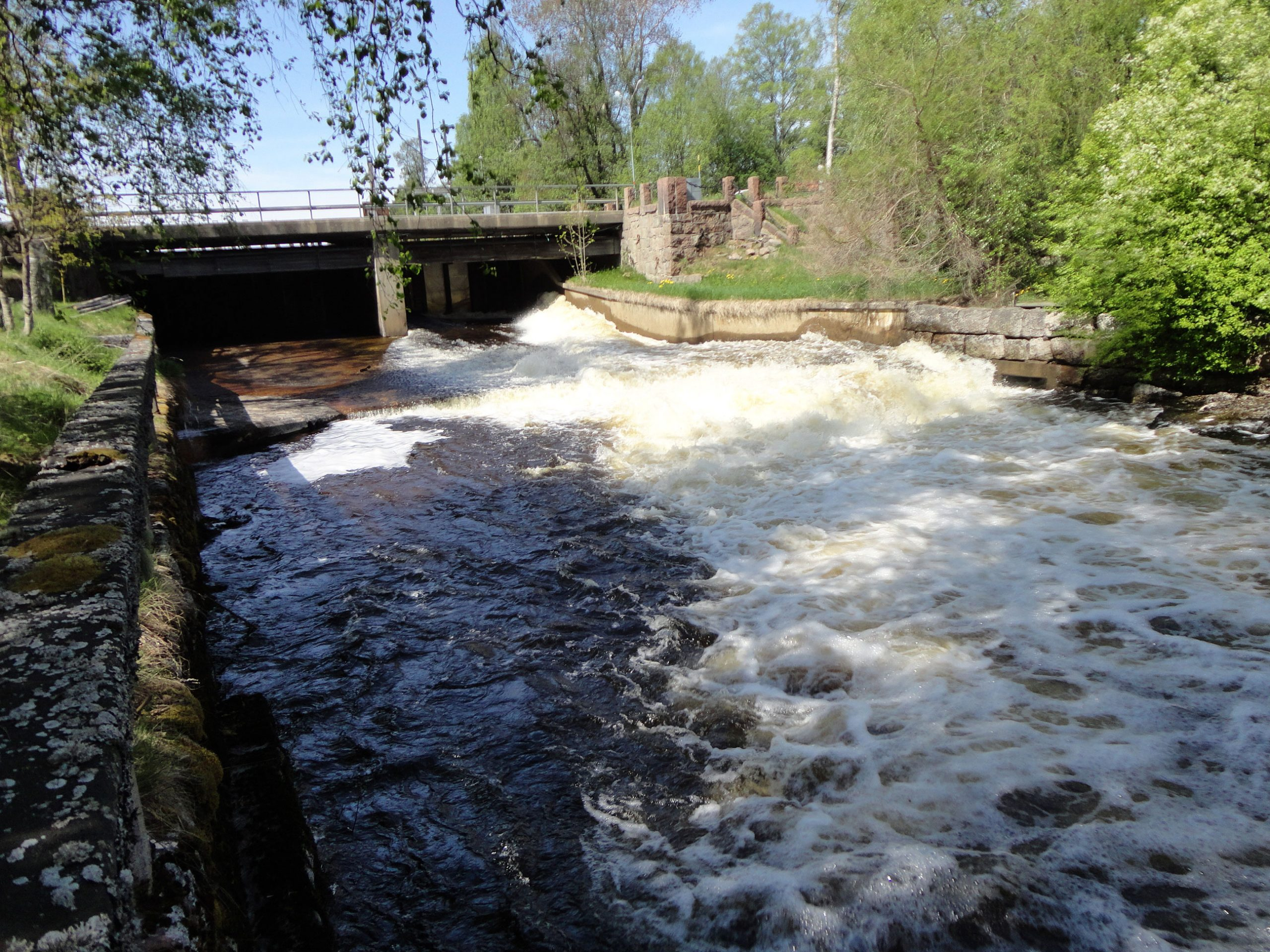We can expect more dam removals in Sweden in the next decade