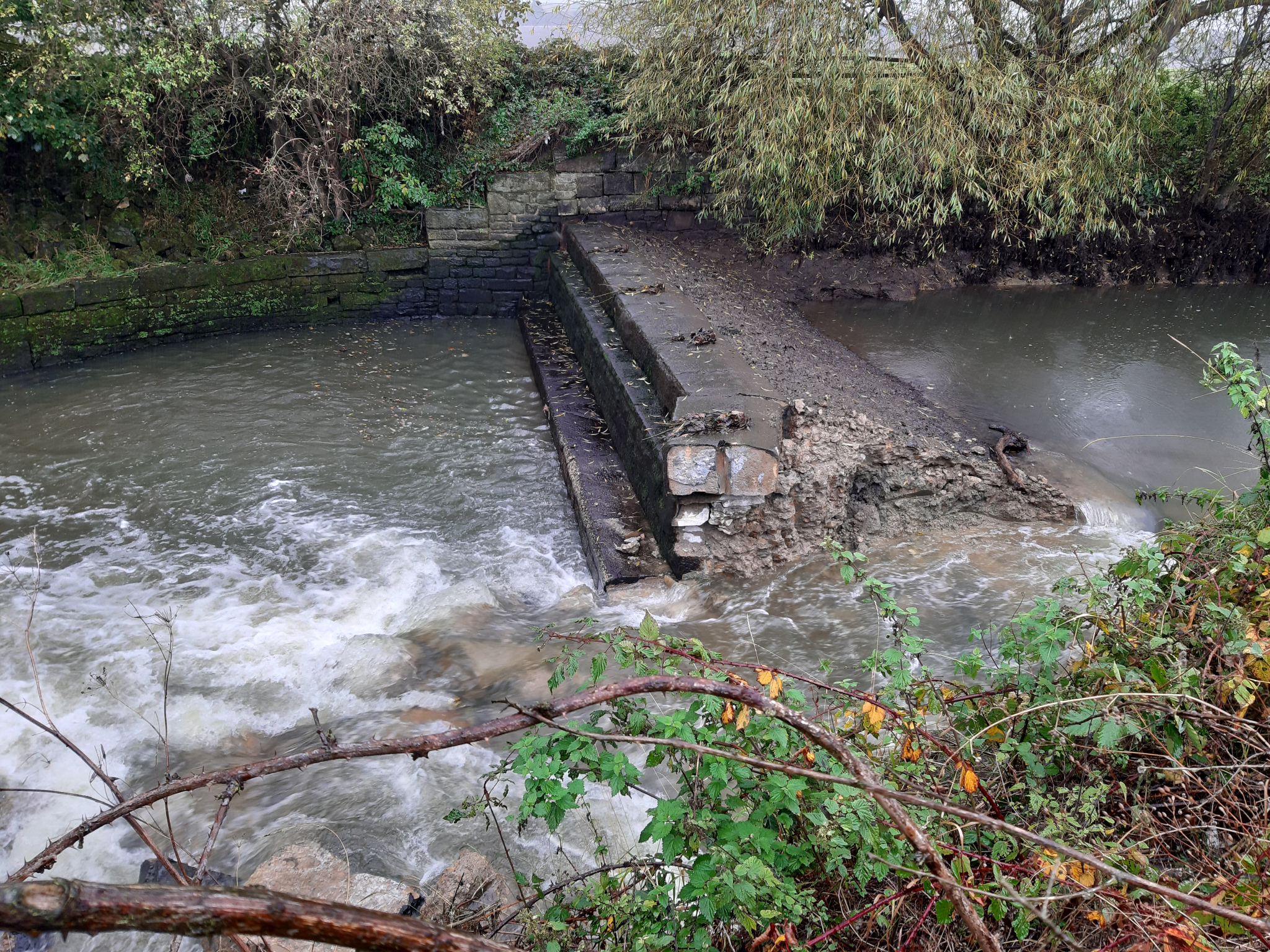 Don Catchment Rivers Trust remove their first weir!